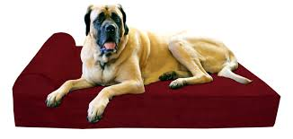 Great Dane Home Decor Bedroom Appealing Dog Beds For Large Dogs Home Blog Best Extra