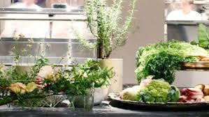 farm to table restaurants nyc nyc s best farm to table restaurants cbs new york