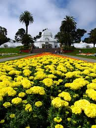 Botanical Gardens Golden Gate Park by Beautiful Golden Gate Park San Francisco