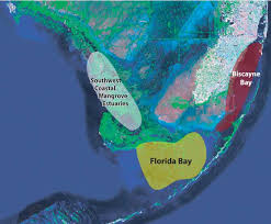 sofia data exchange ecosystem history of south florida