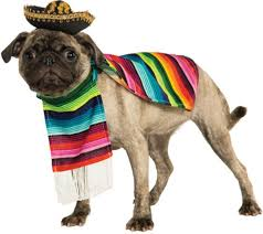 poncho and sombrero mexican dog costume buycostumes com