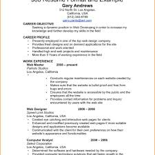 how to format a professional resume new professional resume format professional cv and resume writers