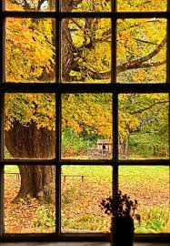 cogblog a cognitive psychology what s outside your window