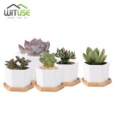 online buy wholesale white pot plants cute from china white pot