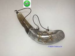 shofars for sale details about 13 anointing silver ram rams shofar shofars for
