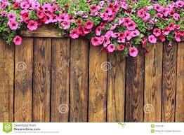 wood flowers flowers wood texture background stock image image 31007961