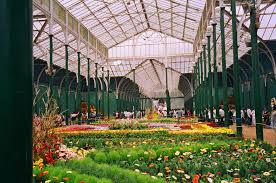 indoor gardens gardening forums