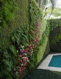 Sweet Vertical Garden What A Nice Way To Achieve Semiprivacy - Wall garden design