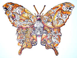 butterfly colored ds art