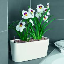 lechuza white all in one delta self watering windowsill planter