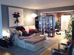Living Room Divider Ikea Ikea Expedit Room Divider Home Design
