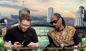 Seth Rogen Meme - top 10 seth rogen smoke weed marijuana memes weed memes