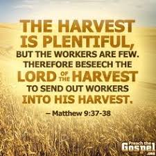 let us not grow weary in doing for in due season we shall