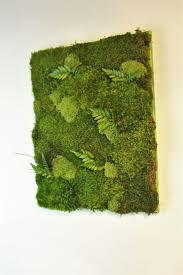 Moss Vase Filler 189 Best Live U0026 Preserved Moss Images On Pinterest Preserves