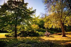 native plants adelaide parks u0026 national parks in adelaide u0026 south australia sa tourism