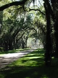 Louisiana travel light images Rosedown plantation state historic site louisiana office of jpg