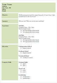 cv performa curriculum vitae sample format