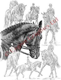 horse drawings and art prints equine artwork and pencil sketches
