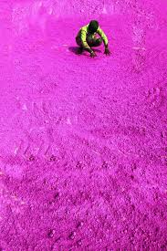 Colors Of Purple Best 25 Festival Of Colours Ideas On Pinterest Holi Happy Holi