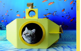 cat castles 20 cardboard habitats you can build yourself carin