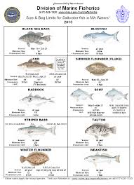 cape cod fishing regulations