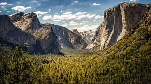 Wyoming forest images Nature landscape trees mountain clouds sky valley cliff jpg