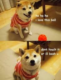 Know Your Meme Dog - doge trending images gallery doge