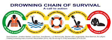 Of Survival File Drowning Chain Of Survival 2014 Jpg Wikimedia Commons