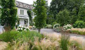 Tall Grass Landscaping by Landscaping With Grasses Landscape Modern With Tall Grass Tall Grass