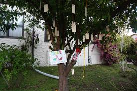 Wish Tree The Wish Tree U2013 Superhero Life With Andrea Scher