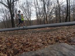 australian shepherd ultra marathon marathon training is u2026 u2013 salty running