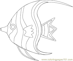 angel fish500 coloring free fish coloring pages