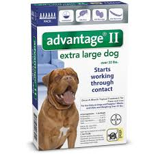 your complete dog flea treatment guide the smart dog guide