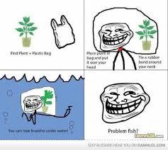 Troll Memes - troll fish