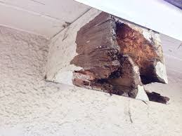 Pergola Rafter Tails by Wood How To Fix Eaten Rotten Rafter Home Improvement Stack