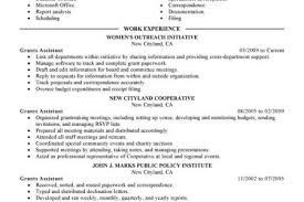 Sample Government Resume by Free Ksa Sample Resume That Is Well Formatted And Expertly Written