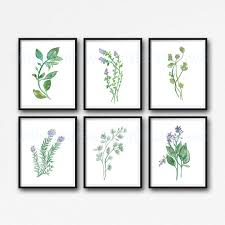 garden herb print set of 6 watercolor green botanical print