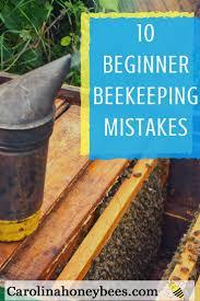1468 best beekeeping images on pinterest bee keeping honey bees