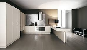 Kitchen Design Basics Wonderful Contemporary Kitchen Design Design Basics For A