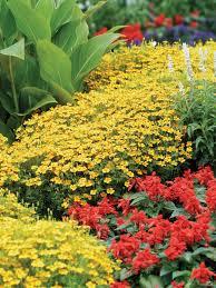 shade gardening secrets hgtv