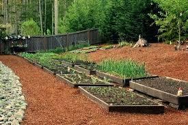 Raised Vegetable Garden Ideas Raised Backyard Garden Cedar Raised Beds Backyard Raised Vegetable