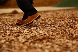 and wood mulch and wood chips for sale in toronto tree doctors inc