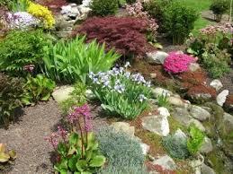 What Is A Rock Garden Building A Rock Garden Thriftyfun
