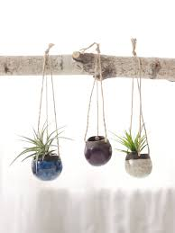 Hanging Wall Planters Small Hanging Planters Home Design Styles