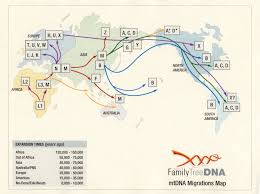 Migration Map Index Of Dna Genetic Maps