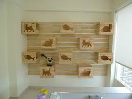 make your pet a part of your life and home a few ideas for how to