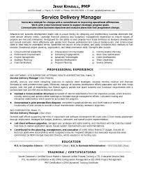 Program Management Resume Sample by It Manager Resume Sample Haadyaooverbayresort Com