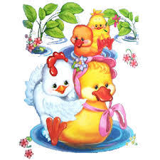 cute birds cartoon animal images