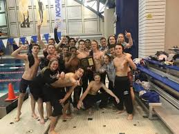 long beach ny county lbhs swimmers take home county chionship long beach ny patch