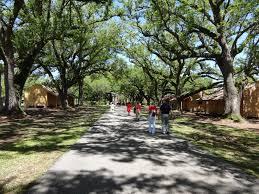 oak alley plantation floor plan home musings outdoor wednesday oak alley plantation louisiana